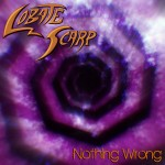 nothingwrongcover